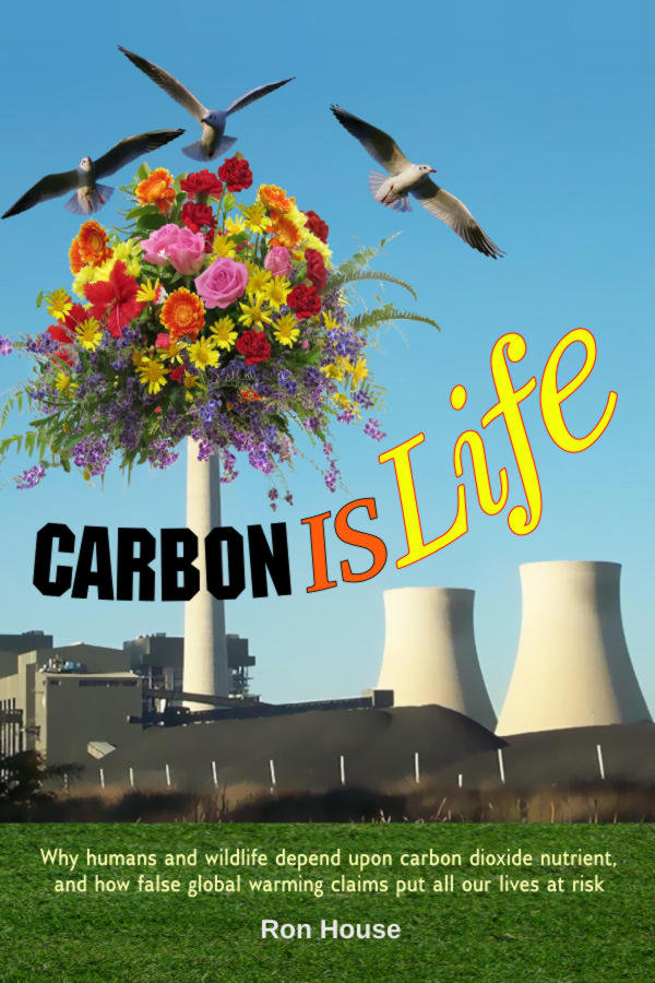 "Front cover of the book ""Carbon Is Life"""